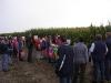 polni-den-kukurice-2009-108